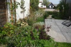 Als contrast met het strakke en royale terras een gevarieerd beeld van vaste planten, klimroos en heesters als Cotinus 'Royal Purple'.