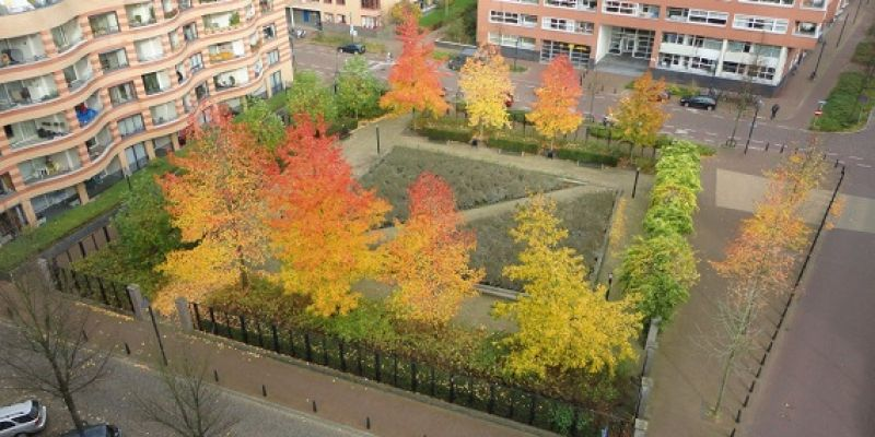 groenvoorziening vergroot leefbaarheid stad