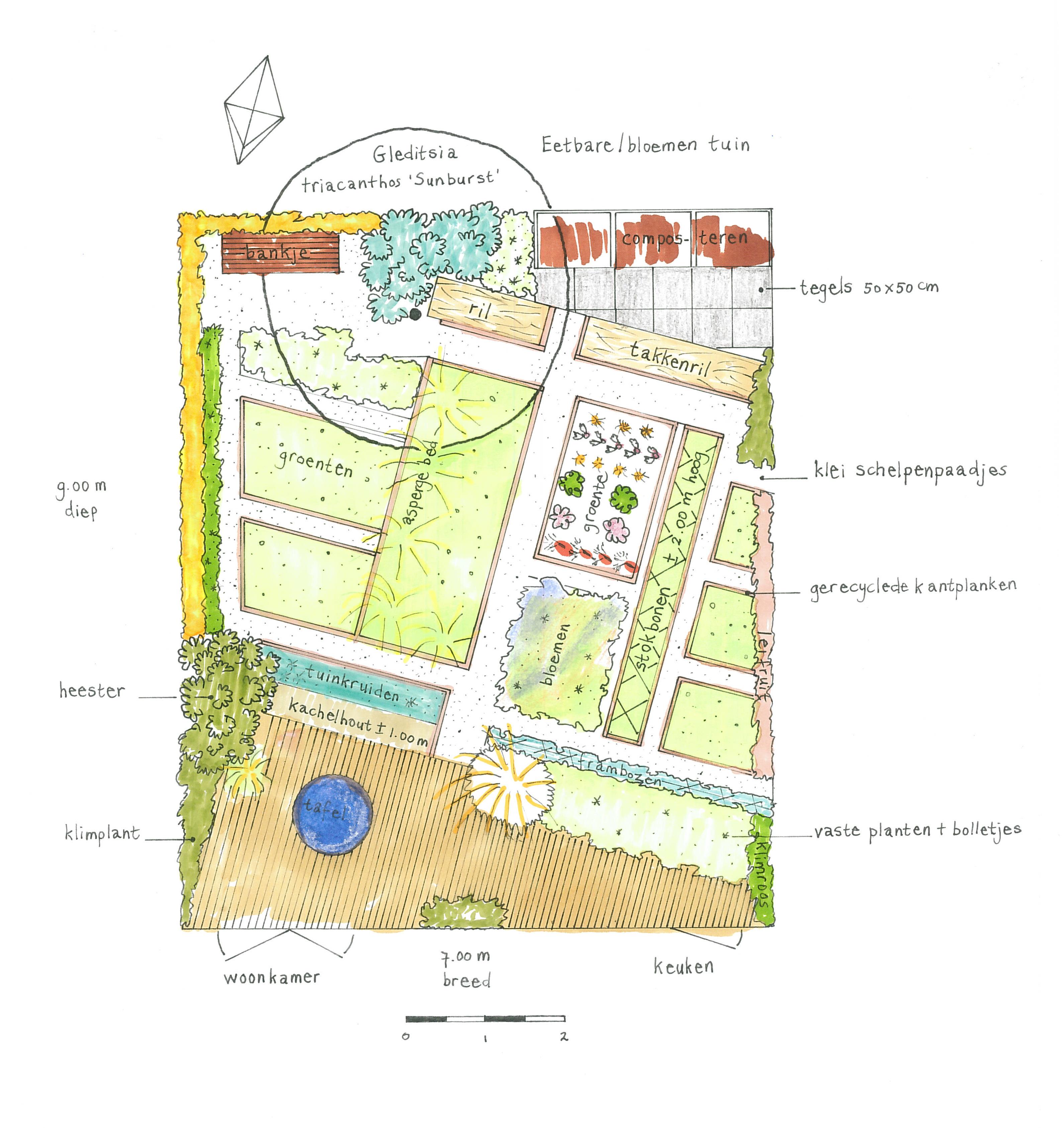 Tuinontwerp en beplantingsplan hoveniersbedrijf marieke for Tuinontwerp eetbare tuin