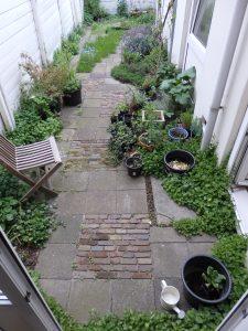 Van tegeltuin naar groene leefruimte